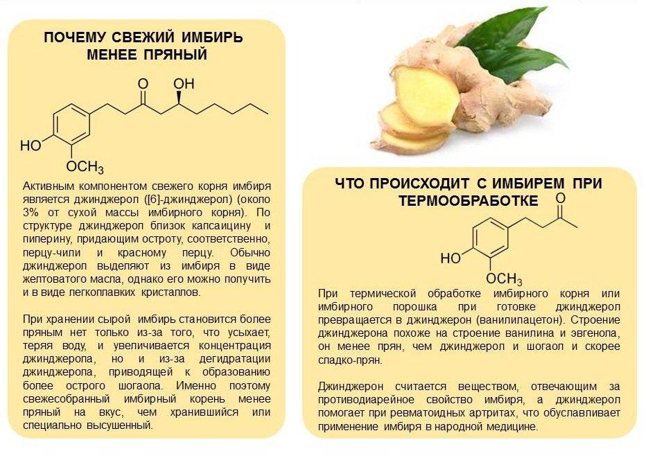 Имбирь для лечения холестерина