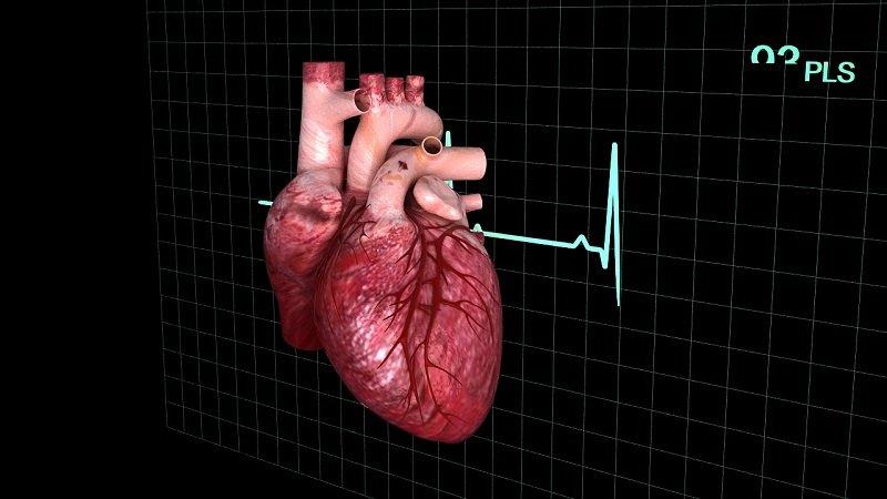 Причины развития миокардического кардиосклероза