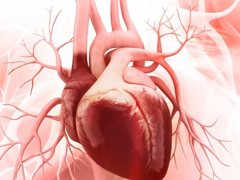 Специфика развития постмиокардитического кардиосклероза