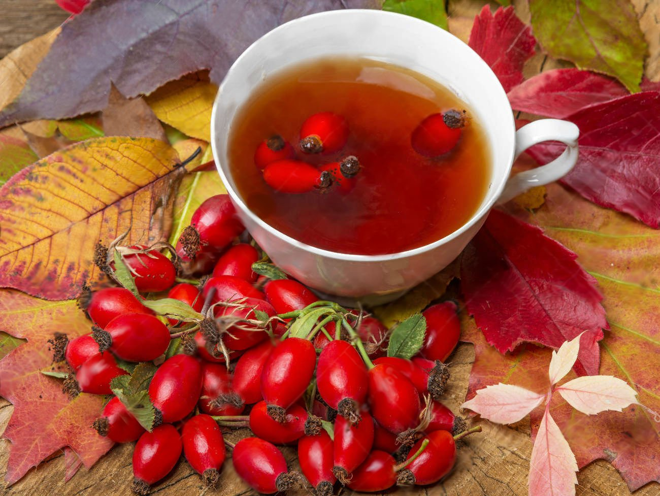 Доктора советуют употреблять чай из шиповника